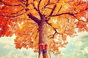Entspannt in den Herbst - Foto Kurs Autogenestraining